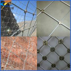 Rete di protezione del pendio dell'acciaio inossidabile (fabbricazione della Cina)