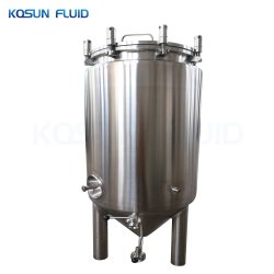 Accueil électrique Unitank Brew fermenteur de yogourt microbienne anaérobie de verre Brew Homebrew fermenteur conique