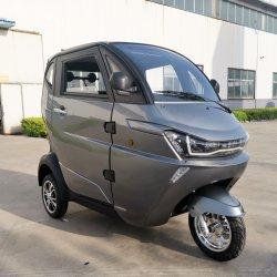 Chinesische elektrische Familie Mini-SUV in der Stadt