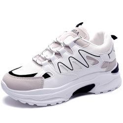 스포츠 단화 여자 단화 숙녀가 할인에 의하여 구두를 신긴다 Shoe