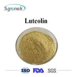 Natuurlijke Luteolin van het Uittreksel CAS 574-12-9 Luteolin van de Grondstof van het Poeder 98% BulkShell van de Pinda Luteolin van het Poeder van het Uittreksel