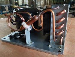 Kühlraum verwendetes MiniEmbraco Kompressor-kondensierendes Gerät