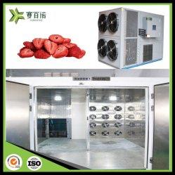 Multi-Stage Sibiono controlan la temperatura de la deshidratación rápida 6kw fresas de pelo nueces botella cerezas Sala de secado de la máquina de secado de frutas y verduras