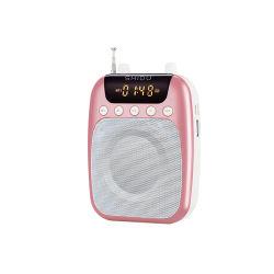 голосовая катушка мини-динамик Shidu один портативный усилитель с FM-радио