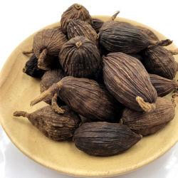 Fructus Tsaoko, 100% natural de Ervas Chinesas