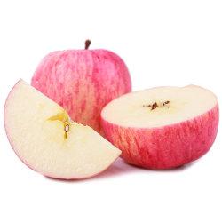 고품질의 신선한 후지산 사과