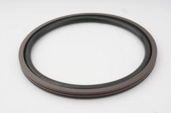 Trou de gros composants de joints du circuit hydraulique de PTFE Glyd Ring