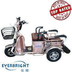 3 Fiets de Met drie wielen van Trike E van de Elektrische Motor van het wiel voor Volwassene