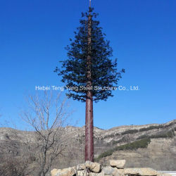 카무플라주 전기통신소나무 모노폴에 대한 자세한 비디오 설명