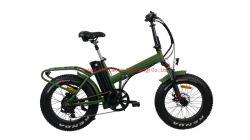 20inch Folding Fat Tire Electric Bike 48V/500W Elektro-Fahrrad für Erwachsene