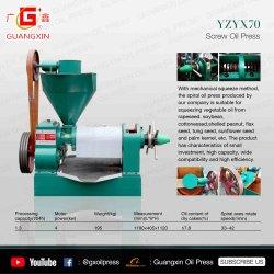 Pequenas Lagar a Máquina Pressione 50kg de amendoim de colza com processamento de óleo de girassol