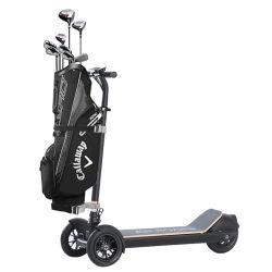 Venta de fábrica barata 500W de potencia Hige carro de golf eléctrico monopatín Scooter eléctrico de 3 ruedas de carros de golf
