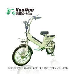 Elektrische Fiets van het Wiel 48V 250watt van de Lading 20inch van China de Op zwaar werk berekende voor Verkoop