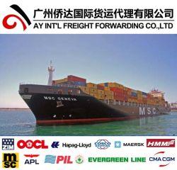 Haus-Hausverschiffen von China nach Gambia durch Sea