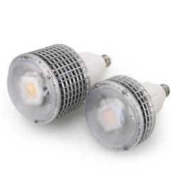 최신 판매 50watts 옥수수 속 LED는 Hydroponic 플랜트를 위해 가볍게 증가한다