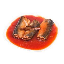 As conservas chinesas sarda pescar em molho de tomate Adicionado Óleo
