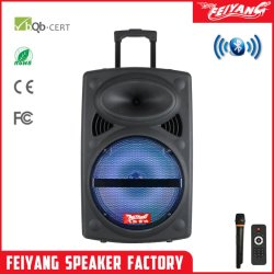 Feiyang Temeisheng 12인치 NFC FCC 트롤리 서라운드 사운드 스피커