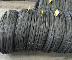C1018 Saip desenhada Rubrica Frio Qualidade fosfatização de fio de aço