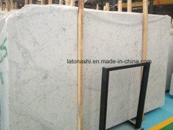 Itália Carrara Branco laje de mármore Bianco para andar/revestimento de paredes