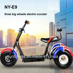 熱い販売の工場3車輪の電気自動車