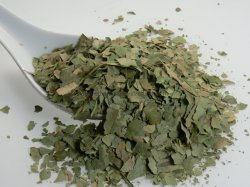 Natürlicher Banaba Blatt-Auszug Corosolic saures Puder 98%