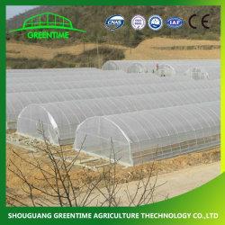 Сельскохозяйственных/коммерческих один Span/дешевые туннеля/Gothic пластиковую пленку для выбросов парниковых газов гидропоники помидоры салат огурец