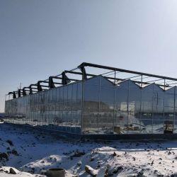 China Prefabricados de efecto invernadero de cristal de gases de efecto invernadero de jardín jardín de diseño utilizado