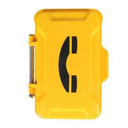 IP/VoIP 비바람에 견디는 전화 상자