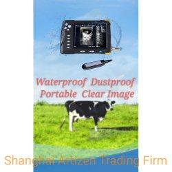 Husbandaryの農場の牛または牛またはヒツジまたは養豚場で使用される獣医のB超音波のスキャンナー