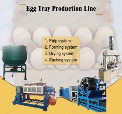Cassetto automatico dell'uovo che fa la macchina di modellatura della scatola