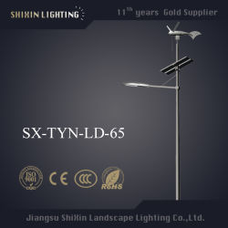 Energiesparende IP65 30 W DC Solar Wind LED Street Lights (SX-TYN-LD-65)
