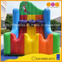 가족이 사용한 Inflatable Basketball TSS Game Shoot Game for Sale (AQ16198-1)