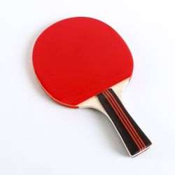 Racchetta di legno di ping-pong del pioppo, sfera dei pp con la maniglia variopinta