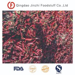 Nova cultura de Pimentão Vermelho Doces de Xinjiang