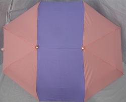 Regenschirm des neuer Entwurfs-faltenden Geliebten