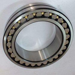 Roulement à rouleaux sphériques double étanchéité BS2-2210-2CS