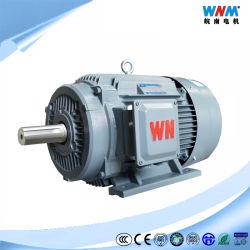 Y2 Frame 80/90/100/112/132/160/180/200/225/250/280/315/355 van het Algemene Doel Ie2 0.18kw~375kw de Elektrische Motoren van Pompen