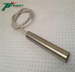 De aço inoxidável 220 W único cartucho da cabeça do tubo de aquecimento