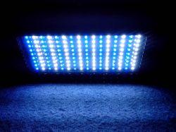 2013 Meilleur Nouveau Style 150W à LED Lampe LED de l'Aquarium récif de corail de lumière pour réservoir de pêche