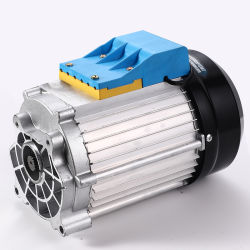 48V 72V 3kw 3900rpm, 70nmmax PMSM 전기 모터(보트, 자전거, 골프 카트, 전기 세발자전거