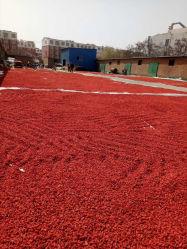 Melhores Bagas Goji secas de Ningxia Wolfberry orgânicos alimentos saudáveis Frutos Secos