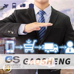 Logistik hält LCL und FCL Seefracht/Seefracht-Logistik-Haus-Hausservice von Shenzhen nach USA/Kanada/Mexiko instand