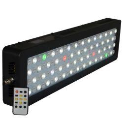 Neues Design Sunrise Sunset Programmable 300W LED Aquarium Light System Controller Three Different Channel