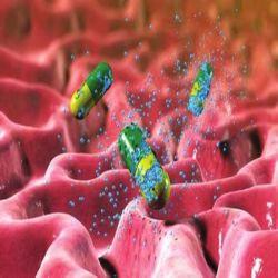 Горох порошок Anti-Inflammation совместных боли в области здравоохранения Диетические дополнения фармацевтических препаратов химического сырья Palmitoylethanolamide