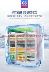 Équipement de cuisine commercial unique porte en position verticale du refroidisseur de boissons réfrigérateur d'affichage