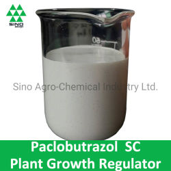 L'Engrais de mangue Paclobutrazol 250g/L SC Régulateur de croissance végétale et fongicide
