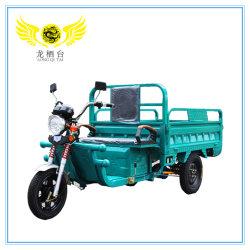 De verschillende Motor Met drie wielen Trike van de Lading van de Cabine voor Verkoop in Pakistan Ghana Filippijnen