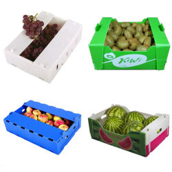 波形か空または対の壁またはCoroplast/Corflute PP/Plasticの転換か再生利用できるか記憶のフルーツ及び野菜ボックス