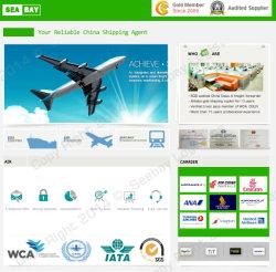 Самый дешевый воздушные грузовые перевозки и доставки груза ставки Китай/Эр-Рияд
