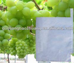 Sac de papier de qualité alimentaire de la sécurité de la vigne